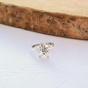 טבעת רגל כוכב ים