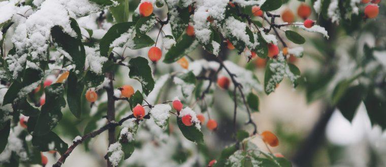 האקססוריז שיעשו לך את החורף (והמלצה לבילוי חמים)